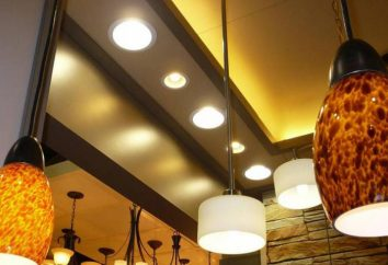 Rodzaje opraw oświetleniowych. Jak wybrać odpowiednią lampę?