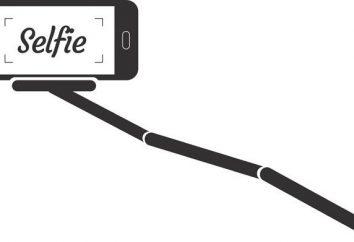 Self-stick: para qué teléfonos son adecuados y qué tipos son