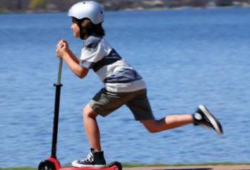 Maxi Micro (scooter de tres ruedas para niños): opiniones, precios