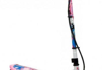 Elektro-Scooter: Bewertungen, Preise. Elektroroller