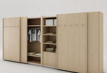 Montaje de los armarios: Las instrucciones y diagramas. Cómo montar un armario?