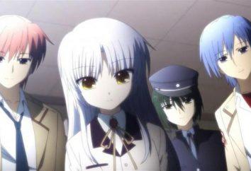 """Anime """"Angel bat"""": les personnages, les descriptions, les commentaires et évaluations"""