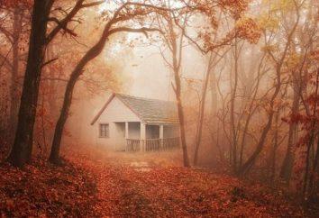 Perché il sogno di una strana vecchia casa o il tuo? Perché il sogno di una vecchia casa nonna morta?
