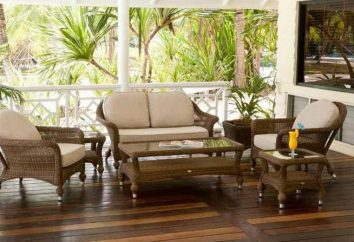 Sofa des künstlichen Rattans: Merkmale und Besonderheiten