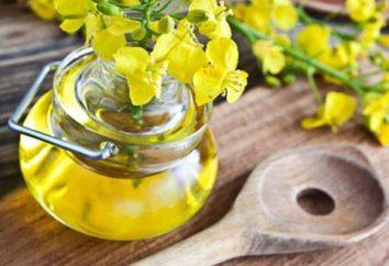 O que torna o óleo de canola? Benefícios e malefícios de óleo de colza