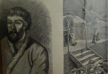 Pugachev rivolta: ribellione o guerra civile?