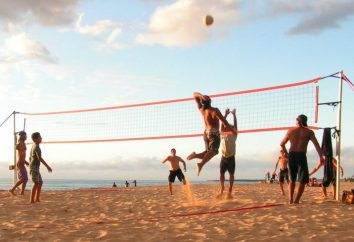 Sports: beach-volley