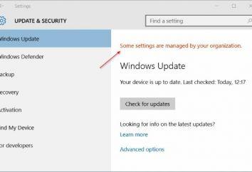 """Windows 10: """"Algumas opções são gerenciados pela sua organização."""" Como corrigir isso?"""