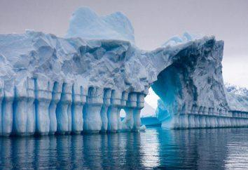 Le principali attrazioni dell'Antartide