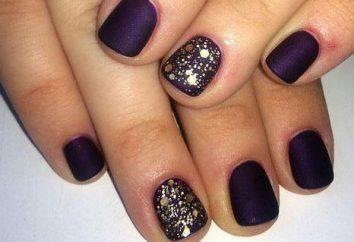 Bella manicure sulle unghie piccoli a casa (foto)