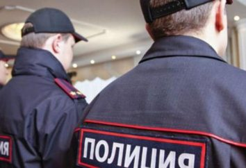 Znieważenie funkcjonariusza policji w wykonywaniu: artykuł kodeksu karnego