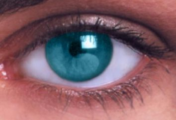corrección de la visión con láser: los pros y los contras de la cirugía