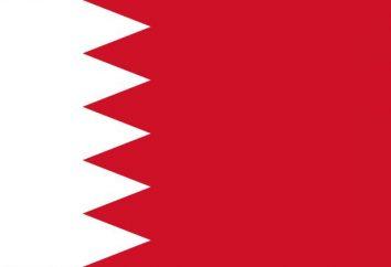 bandiera bianca e rossa: che cosa è il paese?