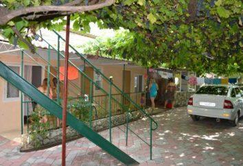 Dzhubga, il settore privato: foto e recensioni. Raccomandazioni per gli alloggi in affitto a basso costo