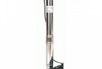 Aquario – pompa per un funzionamento stabile. Review e recensioni