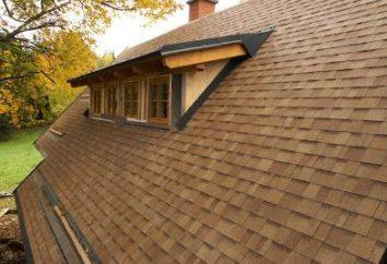 Qual escolher revestimento para telhados?