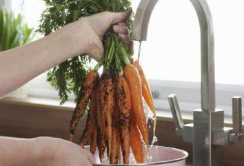 Quando colher cenouras do jardim do depósito?