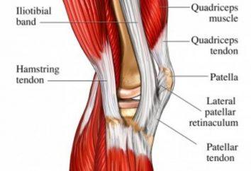 Tendine del piede dolore, lacrimazione, stretching