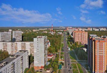 """LCD """"Legend"""" (Troitsk, Moskwa Nowe): budowniczy, postęp budowy, infrastruktura"""