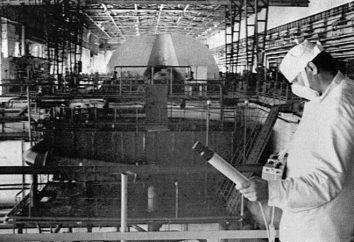 A tragédia de Chernobyl: as características e causas