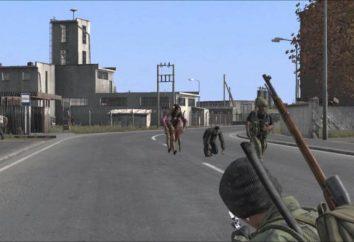 DayZ Standalone. Requisitos do sistema e jogabilidade