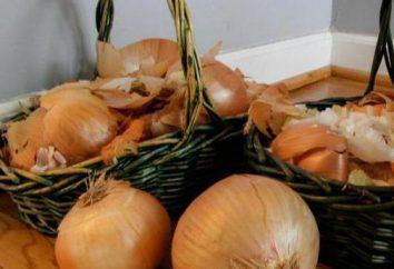 Buccia di cipolla al giardino o sul giardino: l'uso come fertilizzante e di controllo dei parassiti