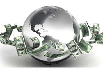 FMI: transcripción. Las metas, objetivos y rol de la organización en el mundo