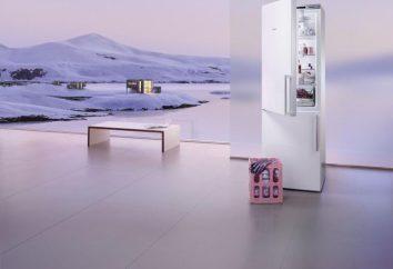 """""""Siemens"""", Kühlschrank: Bewertungen der besten Modelle"""