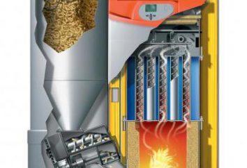 Poêle à pellets avec un circuit d'eau