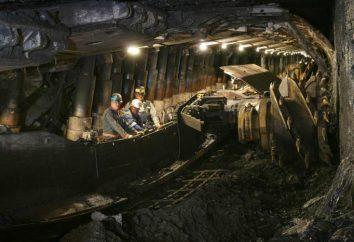 ingeniero de minas: lo que necesita saber acerca de este trabajo?