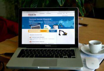 """Raise.ru mercado se tornar parte do serviço """"Transport 24"""""""