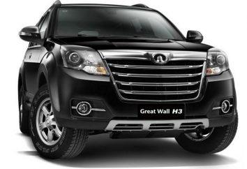 La meilleure marque de voiture chinoise (photo)