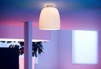 Cor e luz no projeto do quarto