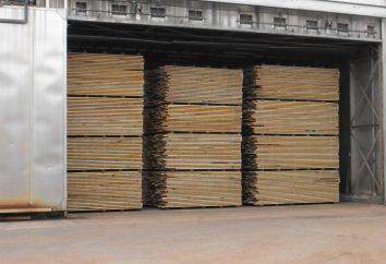 Domokomplekta del legno – una scelta conveniente quando si costruisce una casa