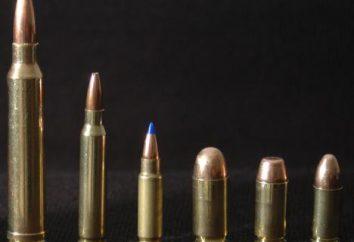 Come scegliere le cartucce calibro 12? Top munizioni calibro 12