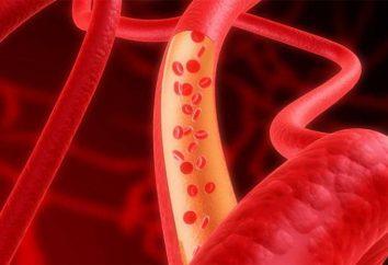 Angioprotectors: co to jest? Przygotowania
