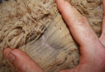 Polaire – est tirée de la couverture de laine de mouton