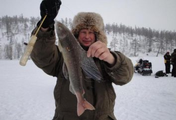 Polowanie i wędkarstwo na Syberii: Kluczowe cechy