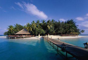 Holiday Island Resort Spa (Maldive / Ari Atoll): foto e recensioni
