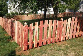 Comment peindre une clôture en bois depuis longtemps pas cher: idées intéressantes, des méthodes et commentaires