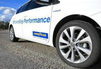 Pneumatici Goodyear EfficientGrip Performance: recensioni dei proprietari