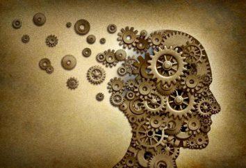 Anthropologisme et le relativisme dans la philosophie – il est …
