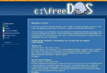 Che cosa è Free DOS?