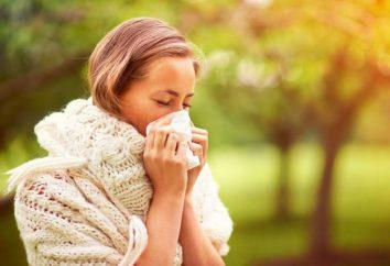 Preghiere e incantesimi da allergie