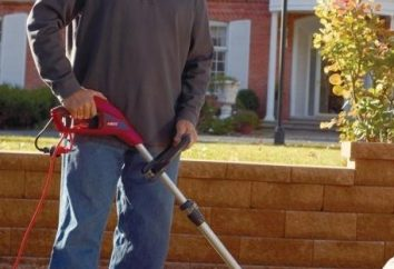 Elektroschneider mit einem Messer – ein zuverlässiges Werkzeug für die Pflege des Rasens