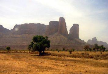 Mali (kraj). Państwo w Afryce Zachodniej
