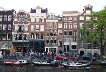 Wo sind die Niederlande auf der Weltkarte, und dass es sollte darauf achten,