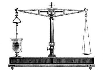 Idrostatica Galileo scales. Galileo Galilei: una breve biografia