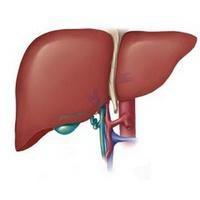 Żółtaczkę (zapalenie wątroby A). Opis choroby