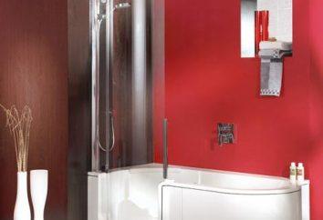 Die Wahl der Gestaltung des Badezimmers mit Dusche